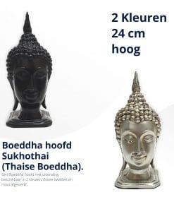 Boeddha-hoofd-sukothai-thaise-boeddha