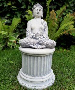 Boeddha Dhyana mudra RS004