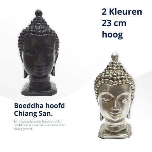 Boeddha-hoofd-Chiang-San