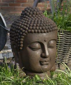 Boeddhahoofd-groot-roestkleur