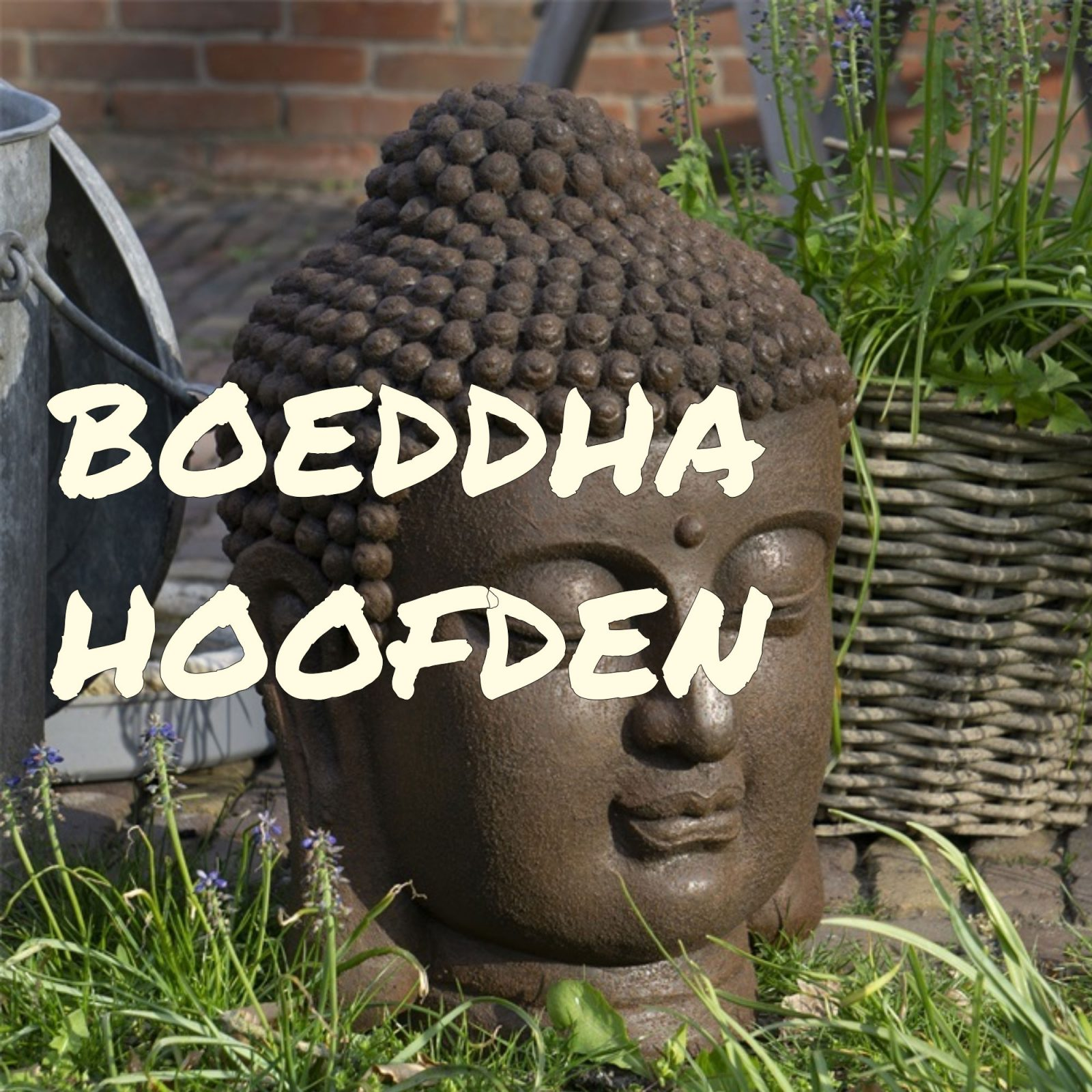Boeddha-hoofden